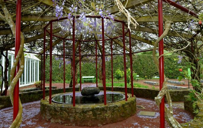 Ilha Do Faial (Fotos) – Ilha Do Faial ~ Jardim Botanico Horta Faial